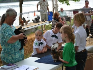 Cover photo for Bath Creek 4-H Rabbit and Chicken Shows- Bath Fest 2014