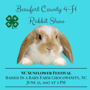 Cover photo for Beaufort County 4-H Rabbit Show