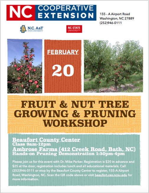Fruit & Nut Tree Growing & Pruning workshop poster