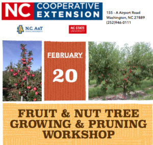 Cover photo for Register Now for Fruit & Nut Tree Growing & Pruning Workshop With Dr. Parker