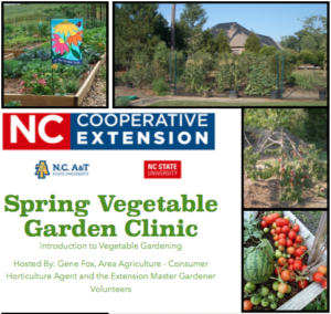 Cover photo for 2018 Spring Vegetable Garden Clinic - an Introduction to Vegetable Gardening