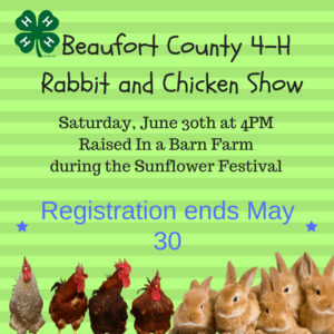 Cover photo for 2018 4-H Rabbit and Chicken Show