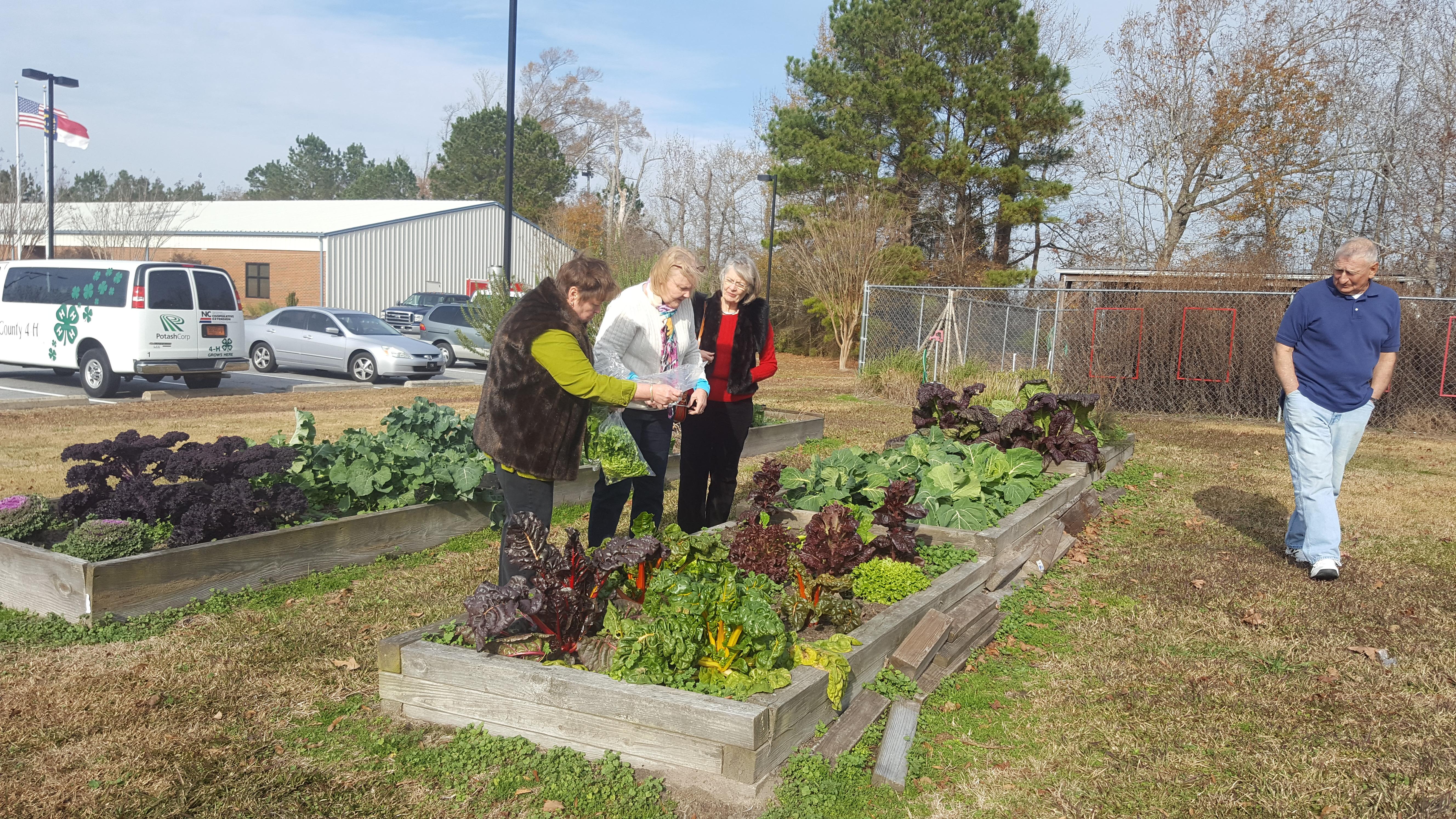 Extension Master Gardener Volunteers