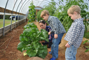 Cover photo for 2019 NC Farm School Down East - Submit Your Application NOW!
