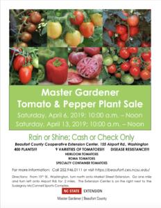 Vegetable Sale Flyer
