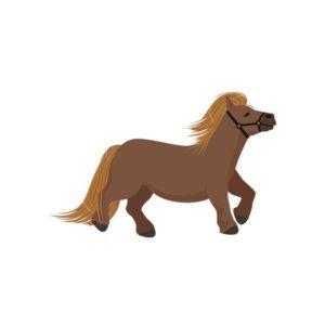 Mini horse clipart. https://www.123rf.com/clipart-vector/miniature_horse.html?sti=o4emfaf92ig4xvbv1m|