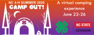 Cover photo for NC 4-H Summer 2020 Camp Out!