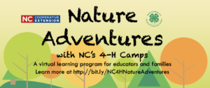 Cover photo for Nature Adventures With NC 4-H Camps!