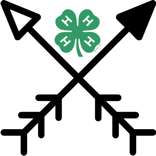 arrows with 4-h clover