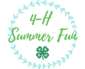Cover photo for Summer Fun Programs 2021